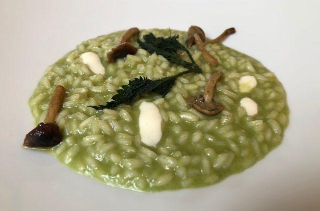 Trattoria Visconti, Ambivere, risotto carnaroli con ortiche, funghi pioppini e stracchino all'antica delle valli orobiche, presidio Slow Food