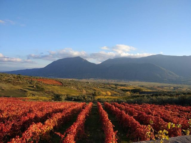 Paesaggio - Sannio Falanghina, giornata dell'Enoturismo nella Capitale Europea del vino 2019