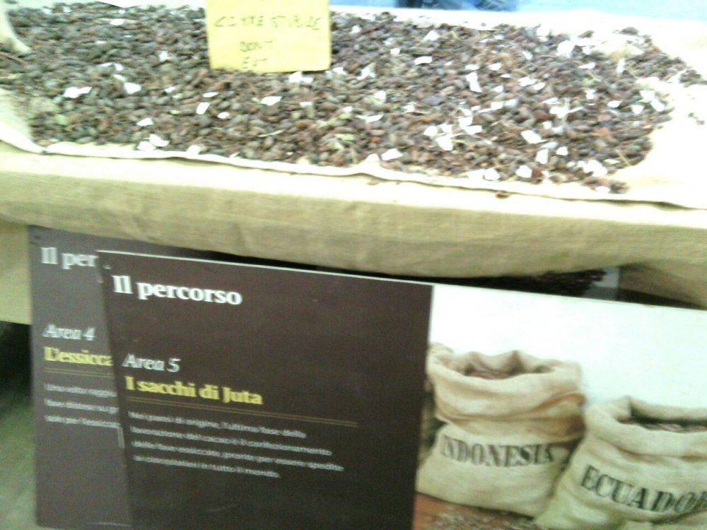 Cioccoshow e mercatini- Il percorso del cacao