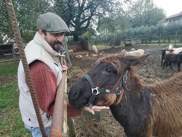 Roberto Dalia e l'asino dei Lepini