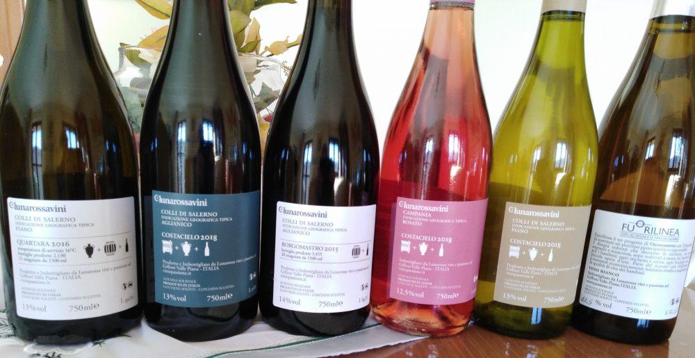 Controetichette vini Lunarossa Nuove annate