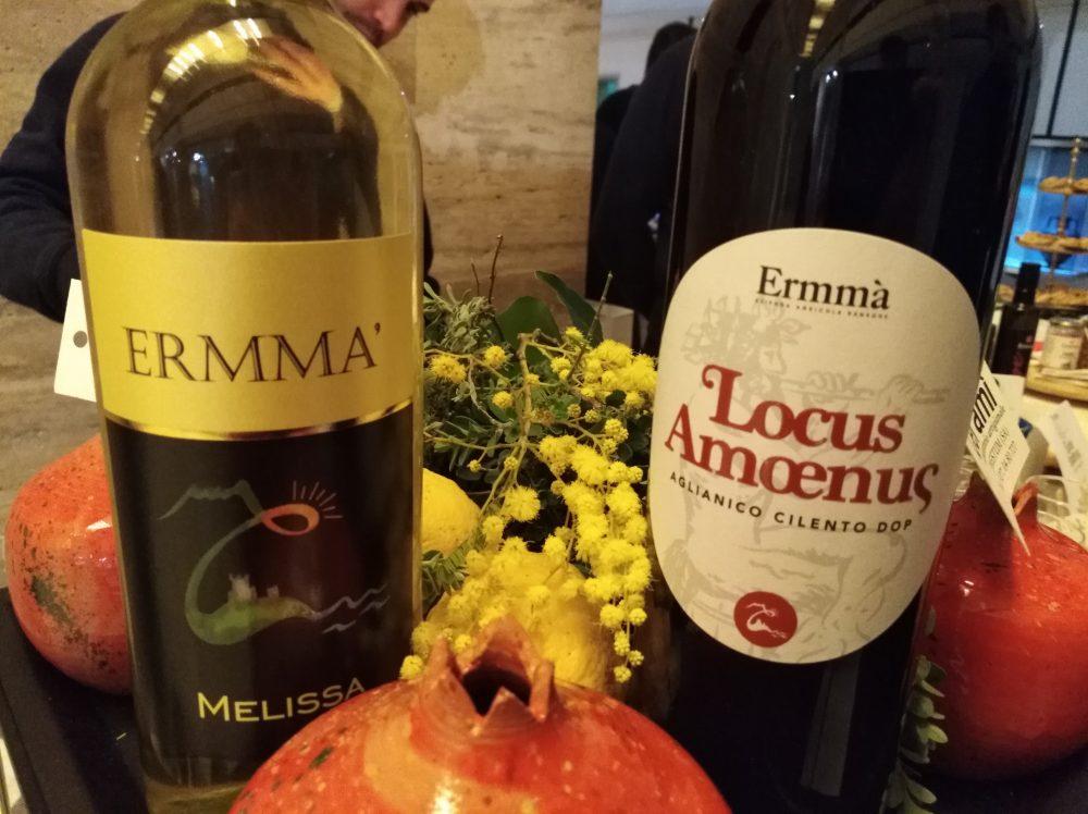 Aperitivi al Museo Vini azienda Ermma'