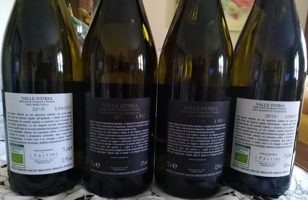 Controetichette vini I Pastini
