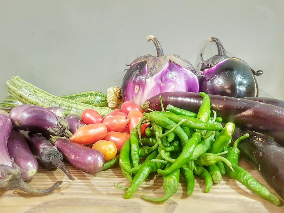 Vesuviano ed Agro - ortaggi