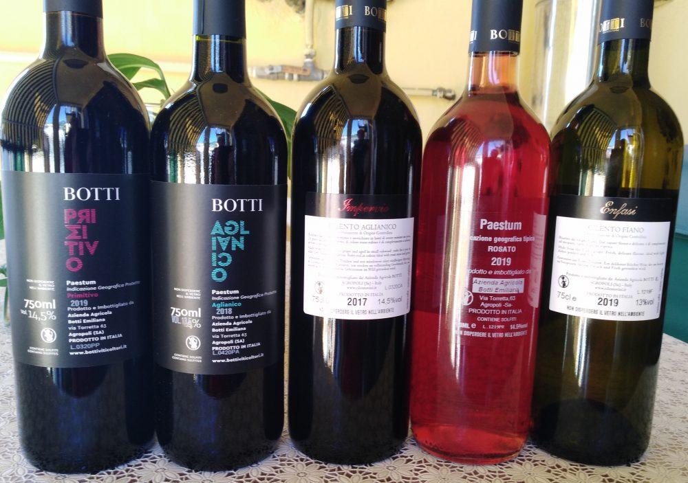 Controetichette vini Botti