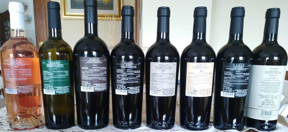 Controetichette vini Schola Sarmenti
