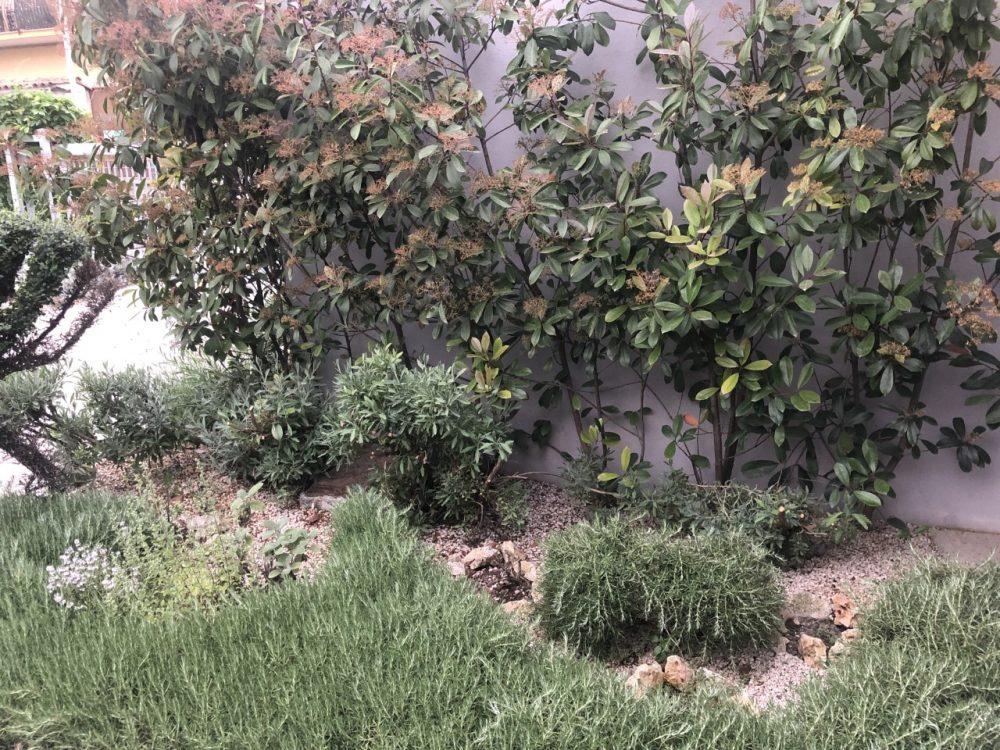 Lira Restaurant - giardino degli aromi