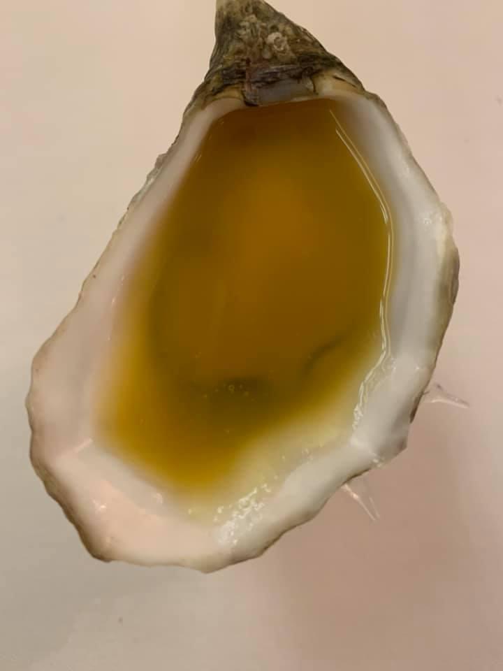 Piazzetta Milu', ostrica