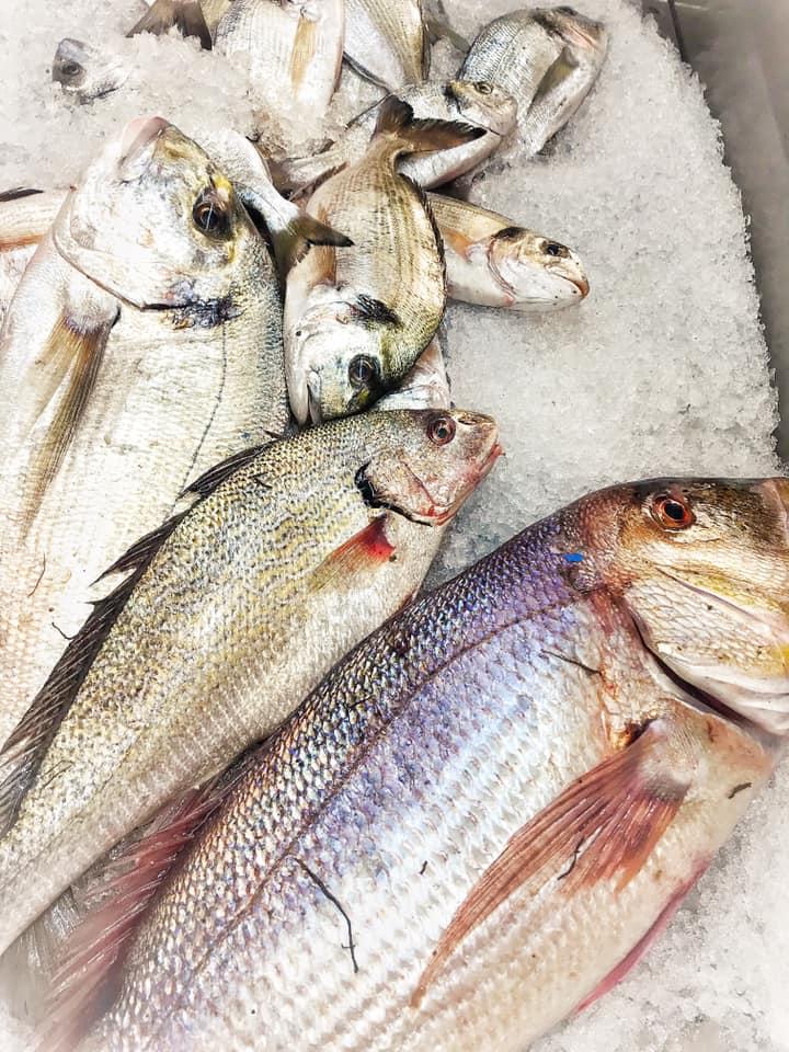 Canneto Beach 2, Il pescato del giorno