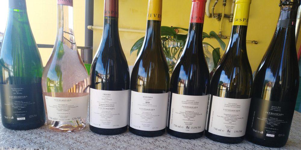 Controetichette vini Feudi Spada