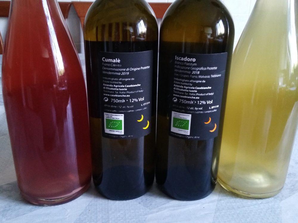 Controetichette vini Casebianche