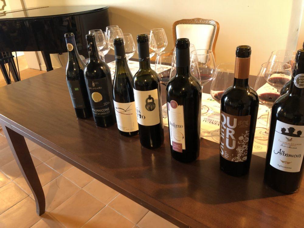 Degustazione Aglianicone - i vini