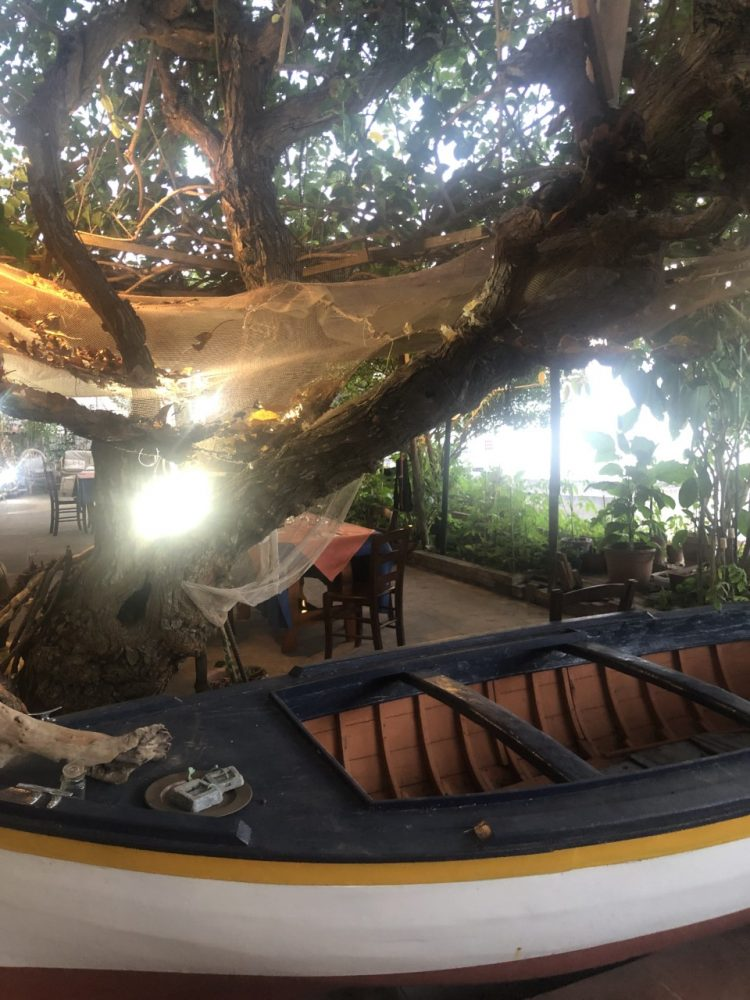 La Tana della Sirena, sala esterna