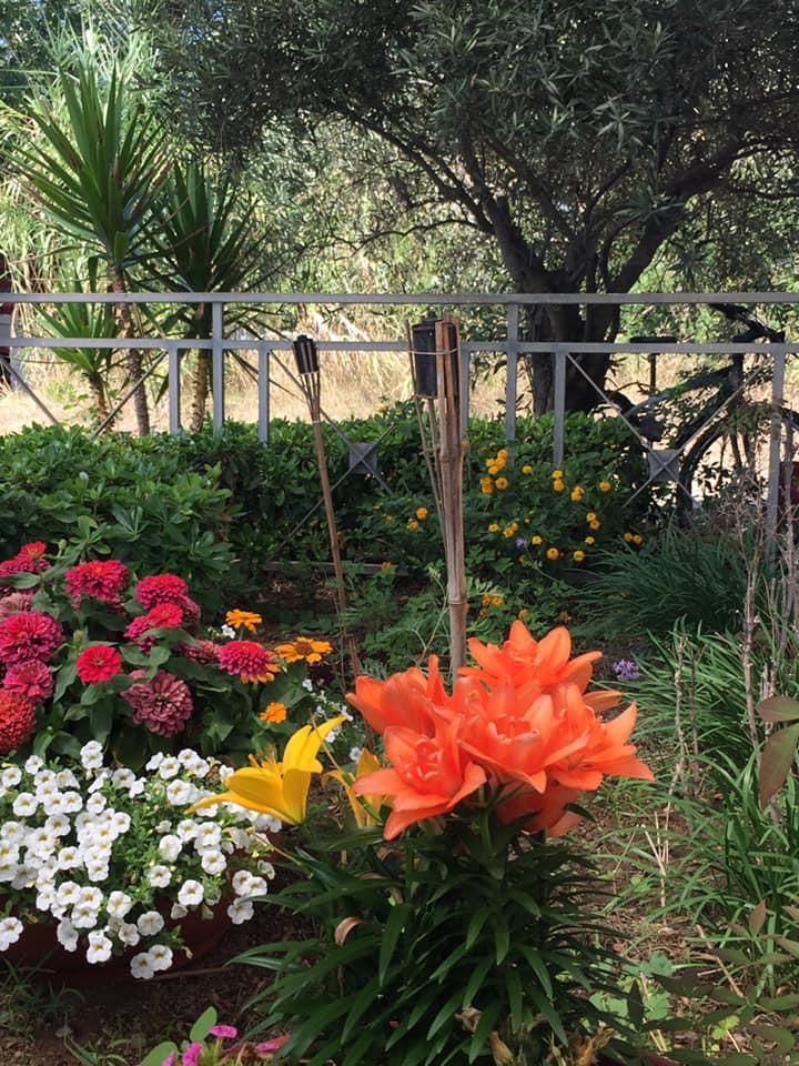 Lido Delphinus, i fiori di Francesca accanto al ristorante