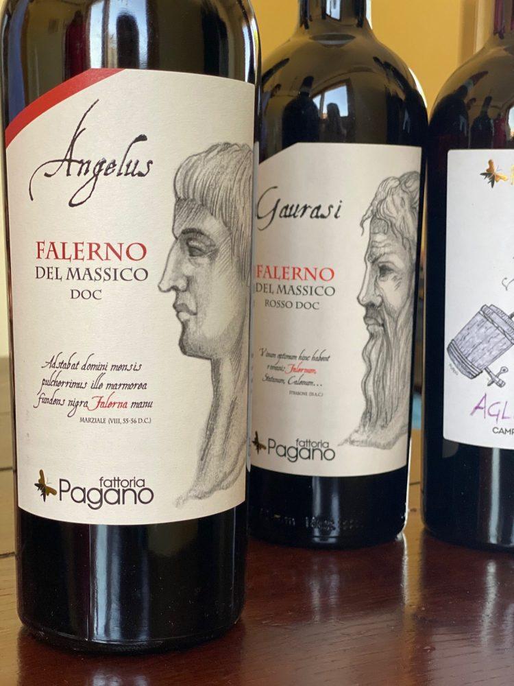 Fattoria Pagano - Falerno del Massico Rosso Angelus