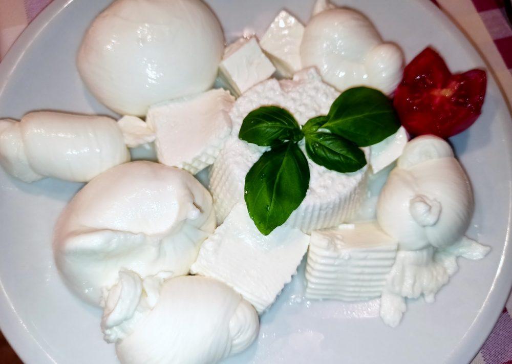Masseria Aglio Piccolo - I Formaggi freschi