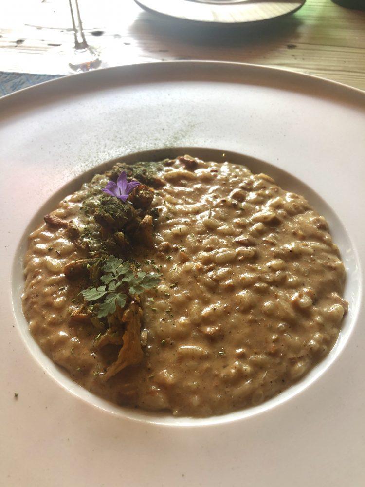 Il risotto ai funghi dello chef Mattia Baroni di Bad Schorgau