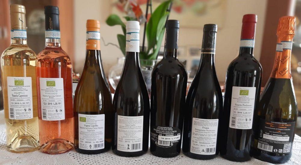 Controetichette vini Sorrentino