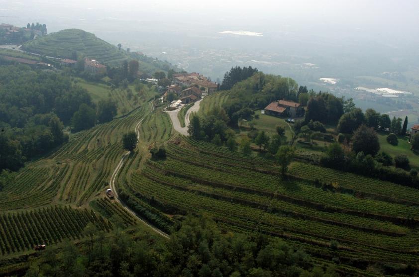 Terrazze di Montevecchia - Vigneti e agriturismo