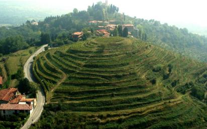 Terrazze di Montevecchia - Vigneto Munciar