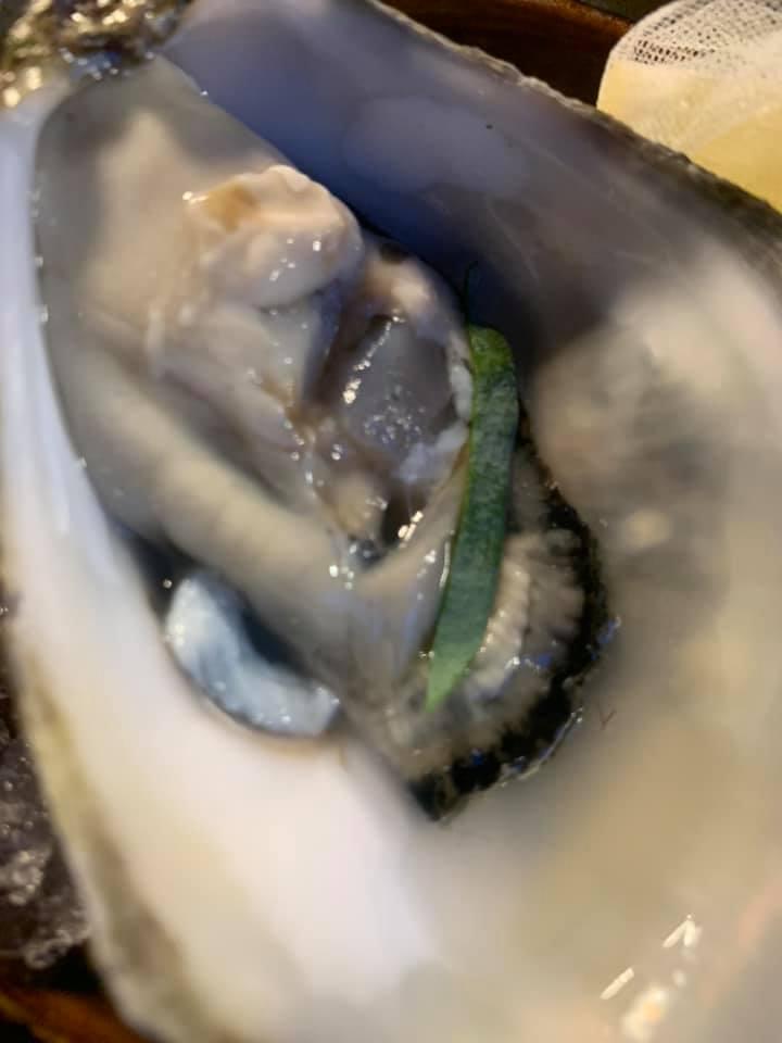 Casamare - ostrica