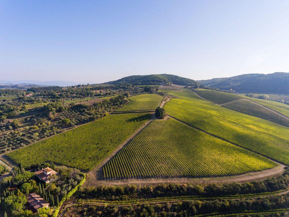 Antinori Tignanello Estate, Chianti, Tuscany, Italy