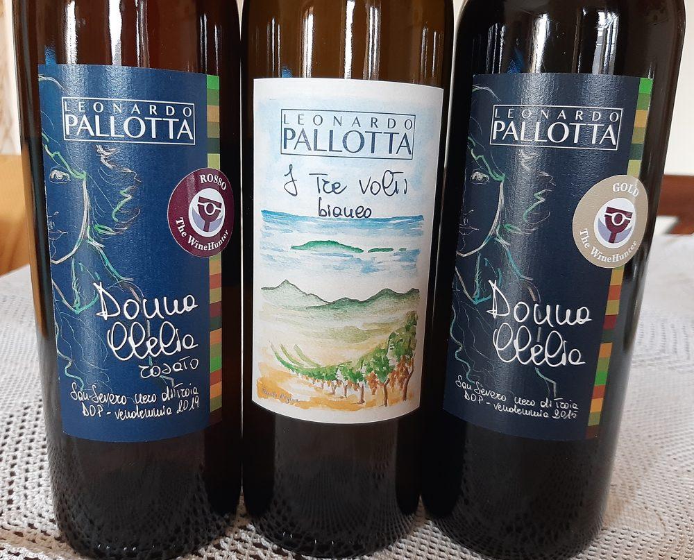 Vini Leonardo Pallotta