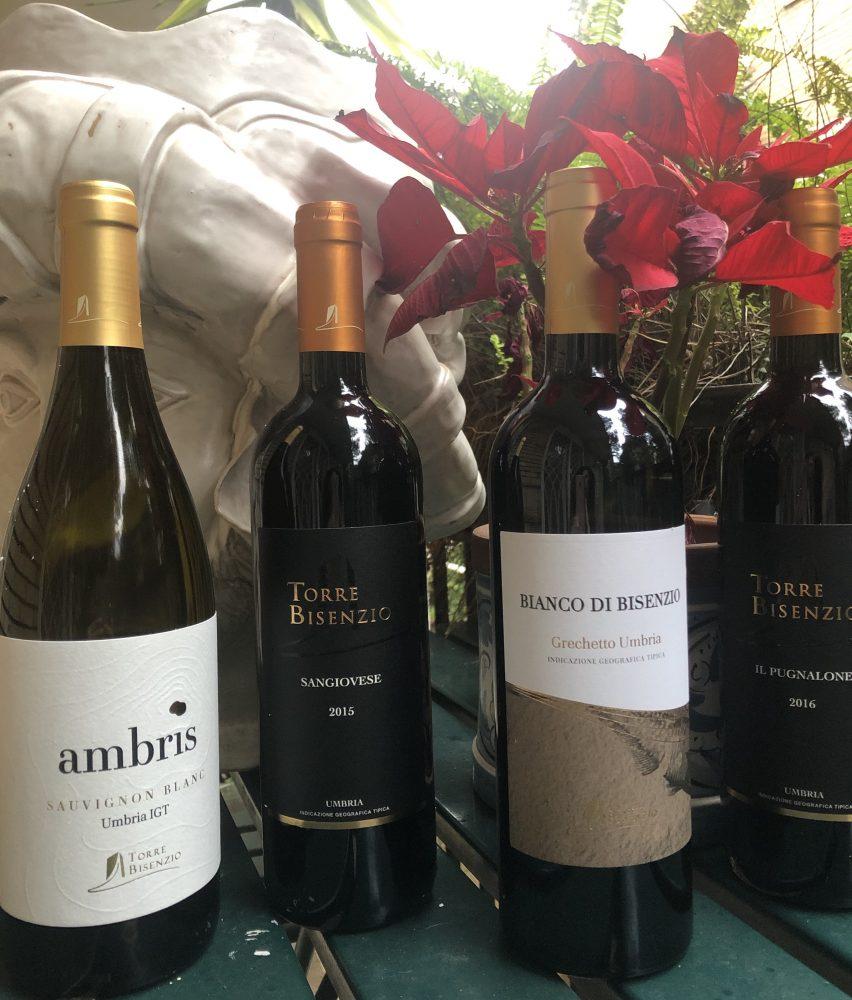 Ambris Sauvignon Blanc 2019, Sangiovese 2015, Bianco di Bisenzio 2019, Il Pugnalone 2016 Torre Bisenzio
