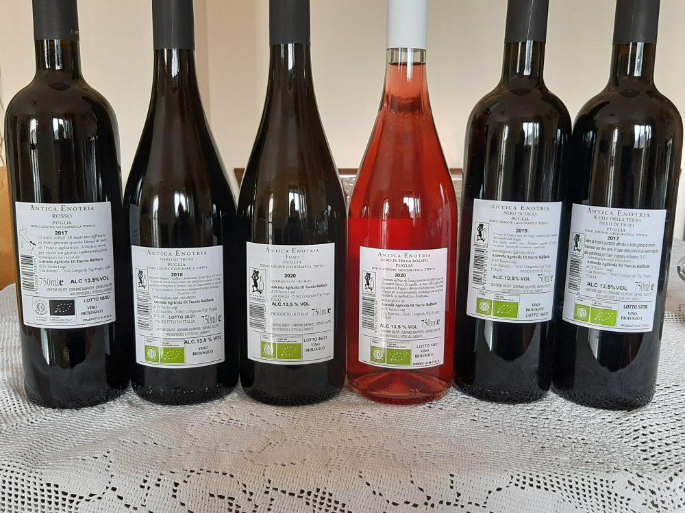 Controetichette vini Antica Enotria