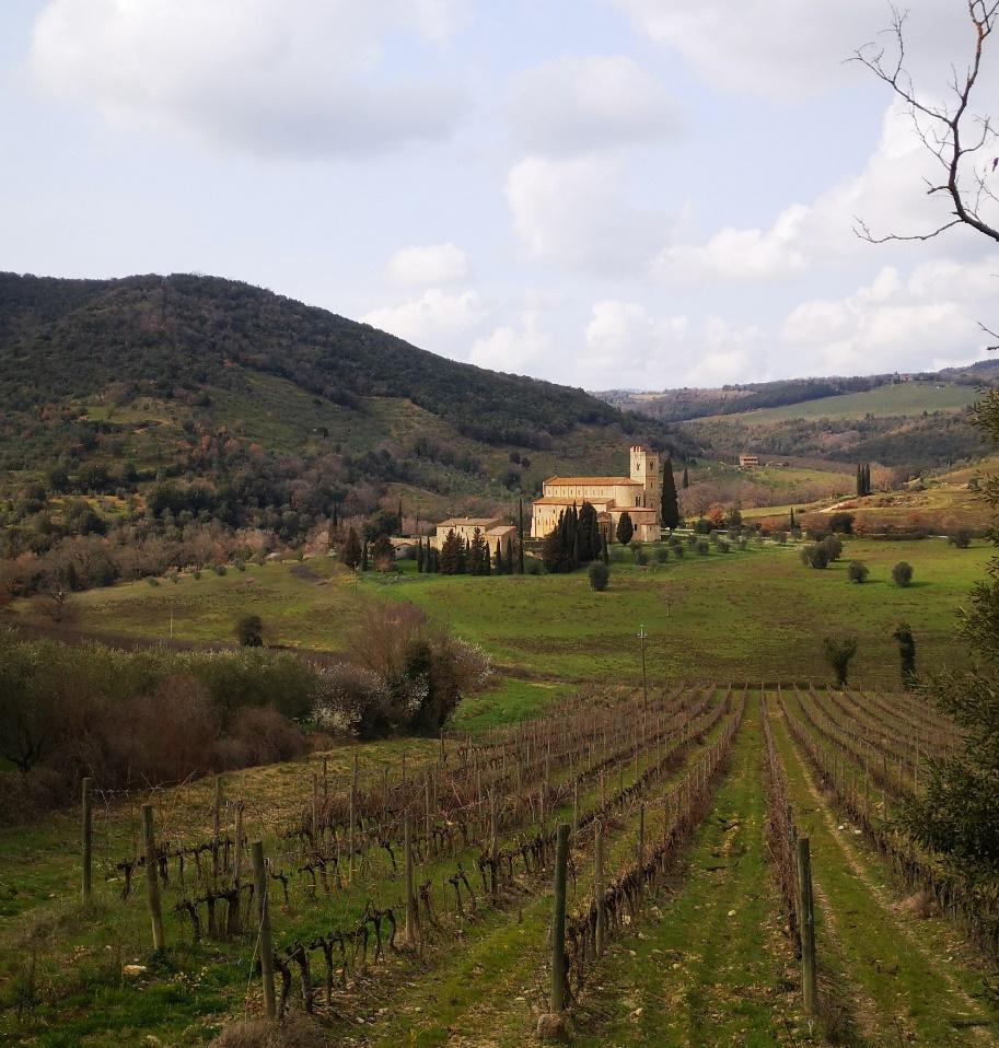 Montalcino Sant'Antimo