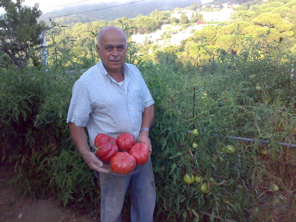 Pomodori capresi di Antonio