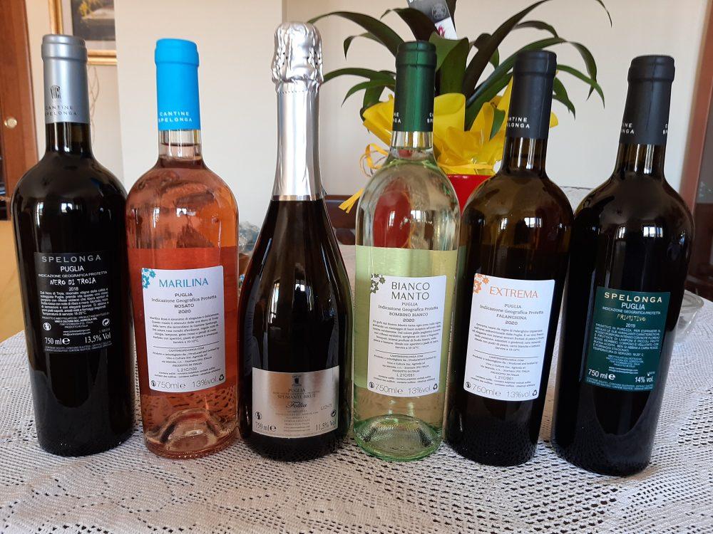 Controetichette vini Cantine Spelonga