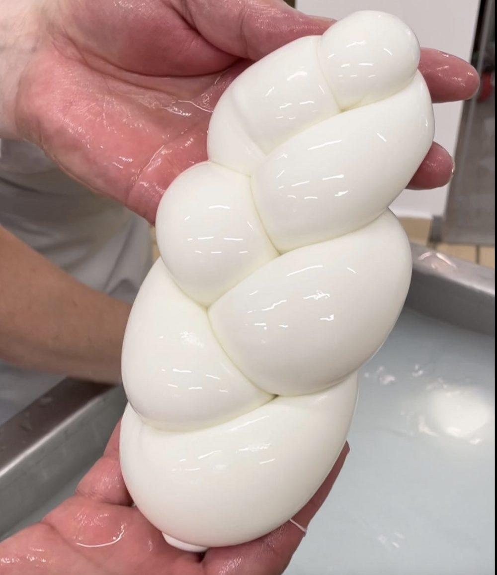 La treccia di mozzarella biologica di Unica