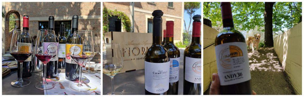 Carla Fiorini, Lady Bianchello, tra vino e Arte