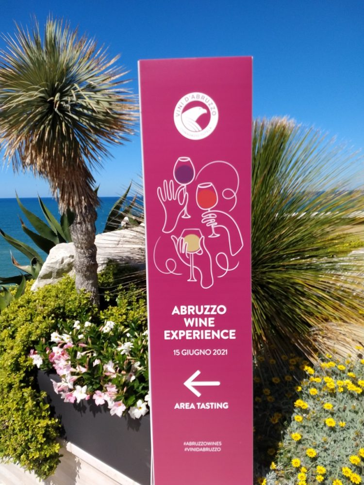 Abruzzo Wine Experience