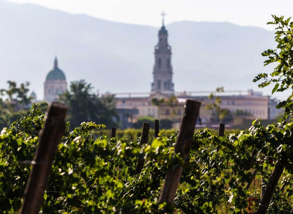 Bosco de' Medici - il santuario