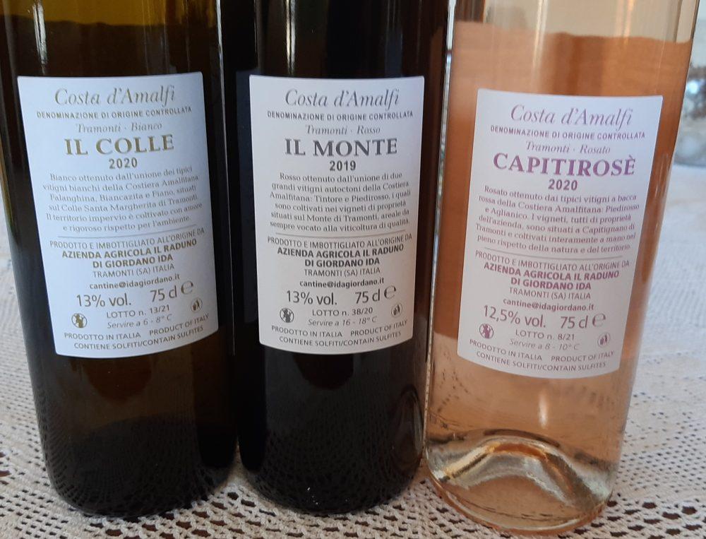 Controetichette vini Ida Giordano
