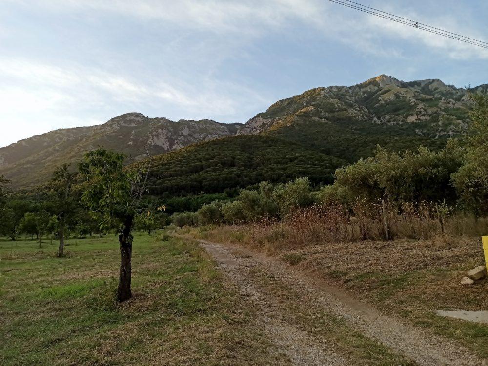 Il sentiero verso il Taburno