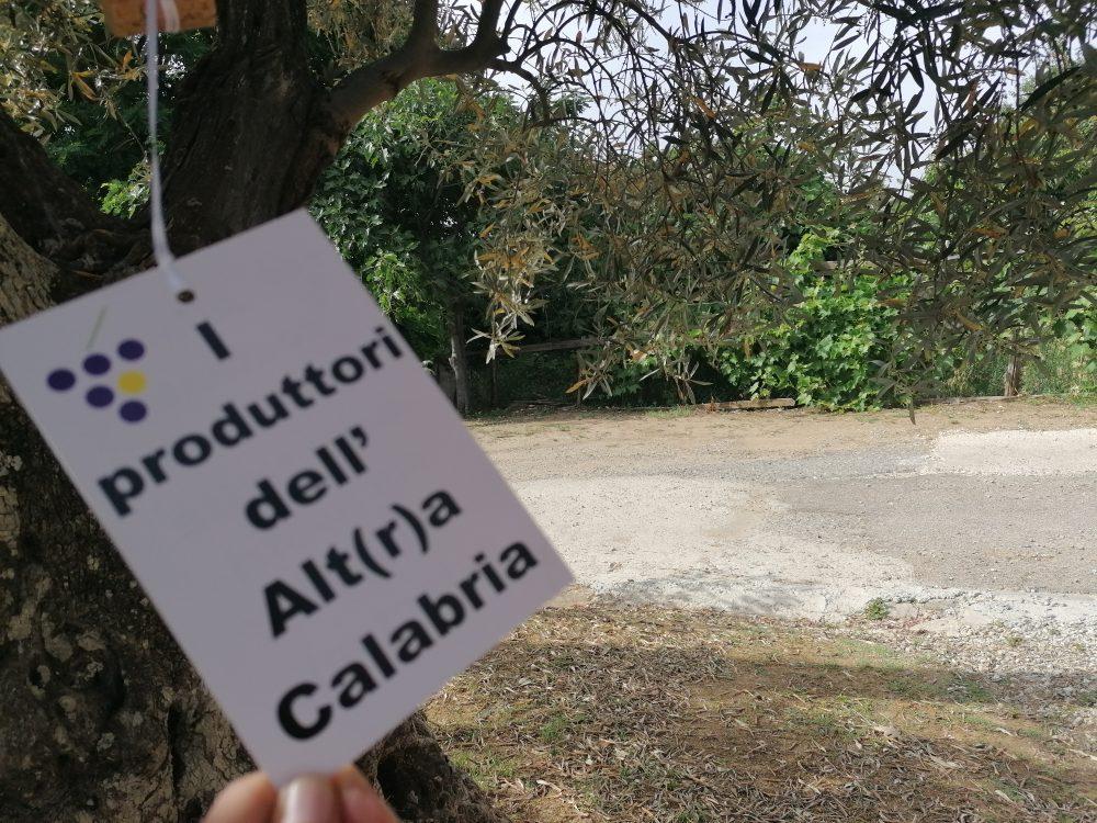 VAC - produttori dell'alt r a Calabria