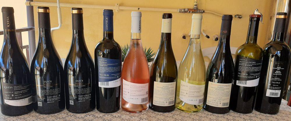Controetichette vini Cantele