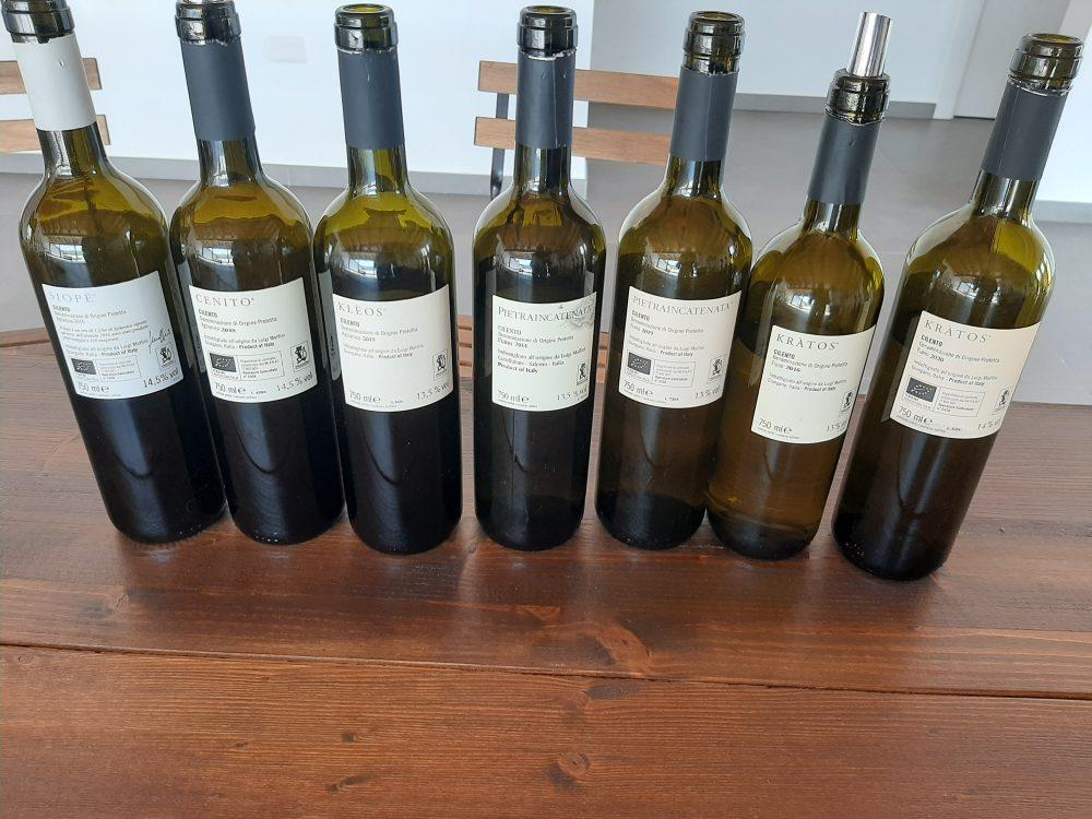 Azienda Luigi Maffini controetichette vini assaggiati