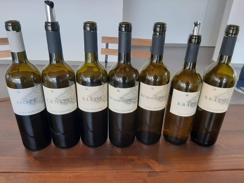 Azienda Luigi Maffini vini assaggiati