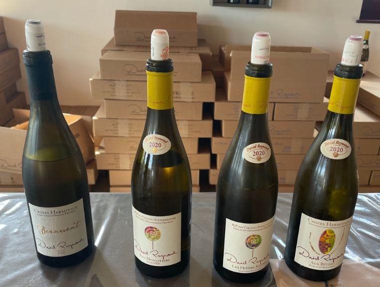 Bottiglie di vino di David Reynaud