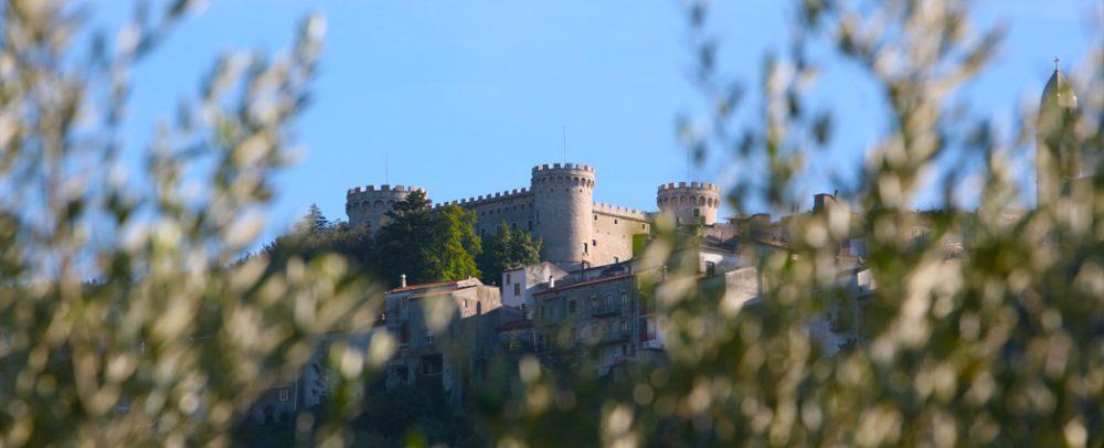 Castello tra gli olivi