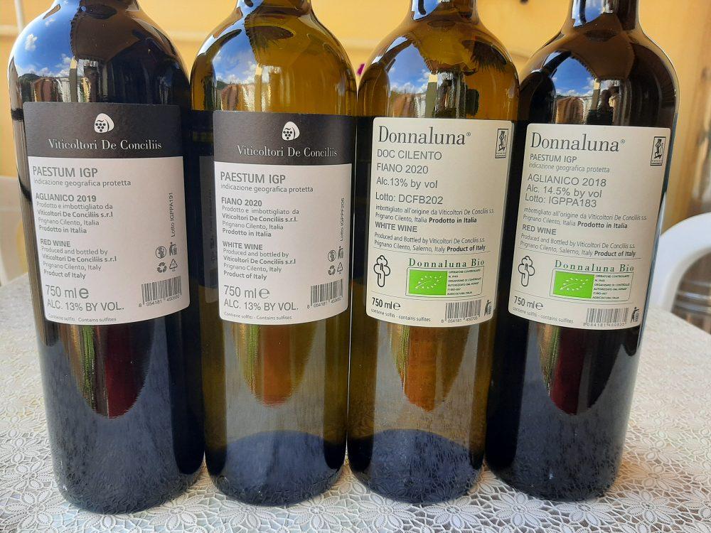 Controetichette vini Viticoltori De Conciliis